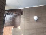 外壁中塗り塗付